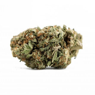 Bruce-Banner-Weed-Strain